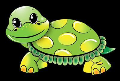 benarkah kura-kura bisa mendengar meski tidak memiliki telinga?