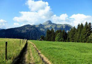 arti peribahasa maksud hati memeluk gunung, apadaya tangan tak sampai