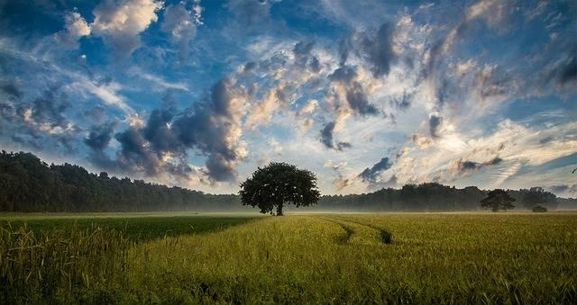 Arti Idiom A Cloud On The Horizon