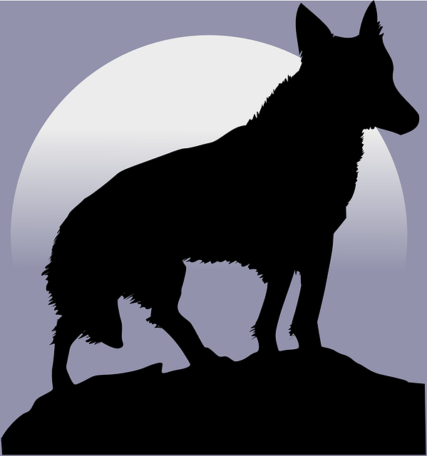 Arti Idiom Kep the wolf from the door